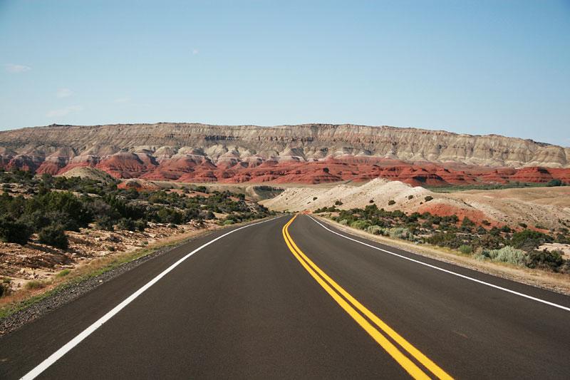 I Am Groot Bighorn Canyon Nationa...
